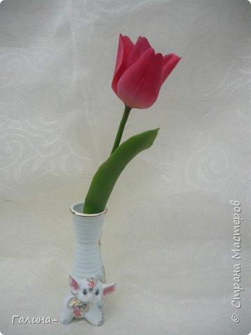 """здравствуйте ! хочу поделиться веточкой жасмина , тюльпаном и брошью с ирисом , я их лепила на мк """"шедевры из глины и фарфора"""" фото 4"""