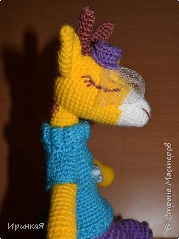 Жирафа  фото 2