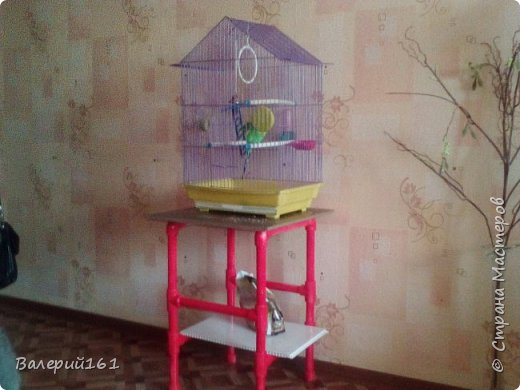 стульчик для попугая