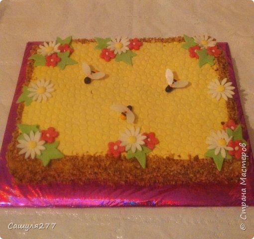 Привет всем!!! Вот показываю вам свои тортики, сделанные за март месяц. На главный праздник  конечно же заказывали тортик для мамы вот с таким детенышем!!!  Красавчик, мне самой очень понравился. фото 10