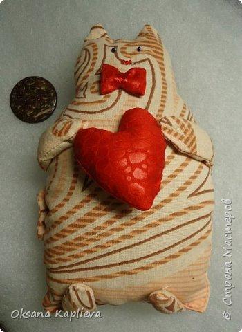 Кот Толстяк с сердечком фото 2