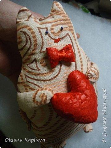 Кот Толстяк с сердечком фото 1