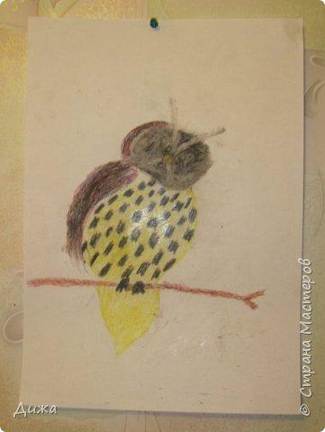 """Я сдаю работу на конкурс """" В мире птиц """". Моя работа № 1 - СНЕГИРЬ Выполнен:  картон, цветная бумага и розовый войлок фото 3"""