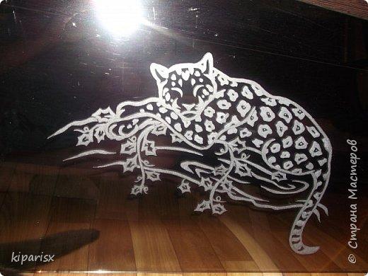Одна из самых любимых работ - спящий леопард. фото 1