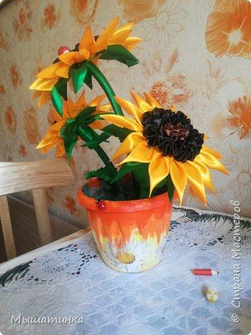 парящая чашка - лето фото 8