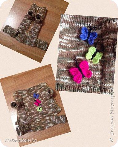Всем привет! Хочу поделиться своим новым увлечением , а именно: вязание нарядов для животных.  фото 5