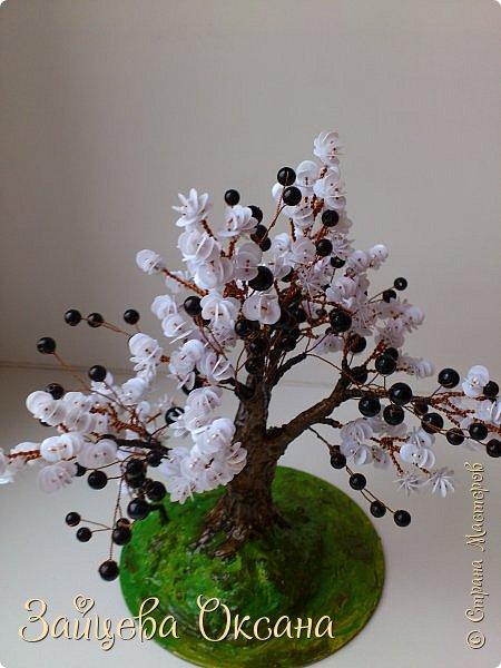 """Доброго времени суток, дорогие жители Страны! Деревьями в стиле Инь Ян я """"заболела"""" лет 5 назад. Долго вдохновлялась, и, вот они! Сделаны в разное время, себе и на заказ. фото 6"""