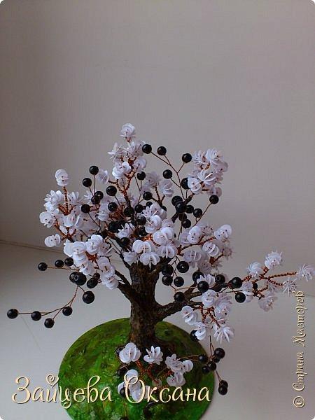 """Доброго времени суток, дорогие жители Страны! Деревьями в стиле Инь Ян я """"заболела"""" лет 5 назад. Долго вдохновлялась, и, вот они! Сделаны в разное время, себе и на заказ. фото 8"""