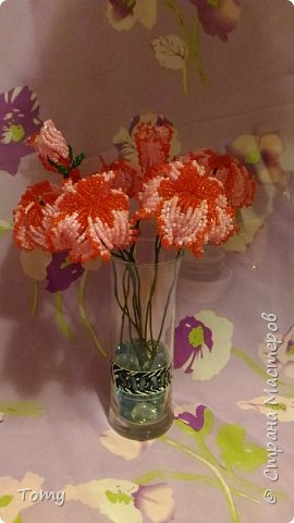 Цветы без названия фото 1
