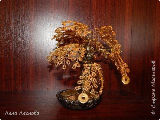 Здраствуйте мастера и мастерицы. Снова у меня денежные деревья. В этот раз сделала в золотом цвете. Бисер чешский. Делались на одном дыхании. фото 15