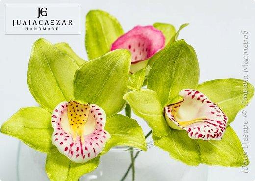 Моя Орхидея Цимбидиум из фоамирана. Ручная работа) фото 1