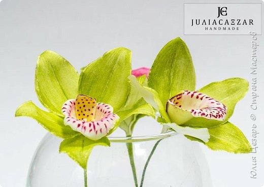 Моя Орхидея Цимбидиум из фоамирана. Ручная работа) фото 2