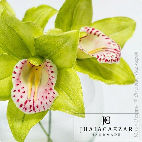 Моя Орхидея Цимбидиум из фоамирана. Ручная работа) фото 3
