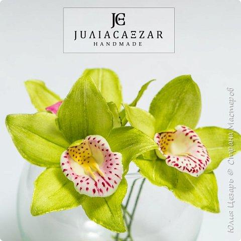Моя Орхидея Цимбидиум из фоамирана. Ручная работа) фото 4