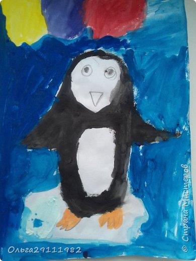 Пингвинчики фото 17