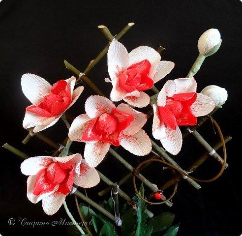 """Конкурс был объявлен здесь http://stranamasterov.ru/node/1011037  Работа №1 """"Подари мне орхидеи""""  Подари мне букет орхидей, Я пойму тайну скрытых признаний, Стану ласковей, проще, нежней, Не сокрою я смелых желаний…   Нежный трепет волшебных цветов Несказанного очарованья Озаряет собою свиданье Без излишних смутившихся слов.   Я раскроюсь, как эти цветы, Красотой небывалой, нежданной, Что сбываются в жизни мечты, Я поверю, как в мир первозданный.  Автор: Рената Юрьева Композиция на вазе. Состав: Конфеты - """"Фундук в шоколаде"""" - 17 шт., """"Арфа"""" - 11 шт., карамель BS Fruit - 5 шт. Флористическая гофра, пеноплекс, проволока, картон, тейп-лента, тычинки искусственные для цветов, ваза. фото 7"""
