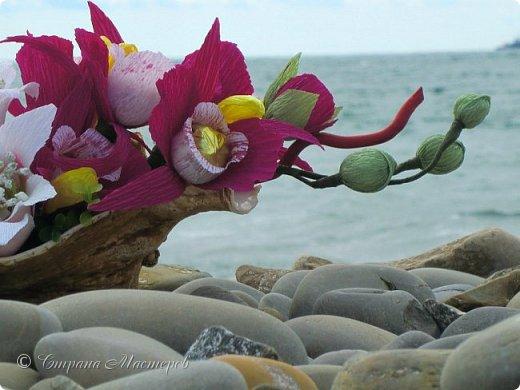"""Конкурс был объявлен здесь http://stranamasterov.ru/node/1011037  Работа №1 """"Подари мне орхидеи""""  Подари мне букет орхидей, Я пойму тайну скрытых признаний, Стану ласковей, проще, нежней, Не сокрою я смелых желаний…   Нежный трепет волшебных цветов Несказанного очарованья Озаряет собою свиданье Без излишних смутившихся слов.   Я раскроюсь, как эти цветы, Красотой небывалой, нежданной, Что сбываются в жизни мечты, Я поверю, как в мир первозданный.  Автор: Рената Юрьева Композиция на вазе. Состав: Конфеты - """"Фундук в шоколаде"""" - 17 шт., """"Арфа"""" - 11 шт., карамель BS Fruit - 5 шт. Флористическая гофра, пеноплекс, проволока, картон, тейп-лента, тычинки искусственные для цветов, ваза. фото 54"""