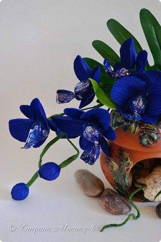"""Конкурс был объявлен здесь http://stranamasterov.ru/node/1011037  Работа №1 """"Подари мне орхидеи""""  Подари мне букет орхидей, Я пойму тайну скрытых признаний, Стану ласковей, проще, нежней, Не сокрою я смелых желаний…   Нежный трепет волшебных цветов Несказанного очарованья Озаряет собою свиданье Без излишних смутившихся слов.   Я раскроюсь, как эти цветы, Красотой небывалой, нежданной, Что сбываются в жизни мечты, Я поверю, как в мир первозданный.  Автор: Рената Юрьева Композиция на вазе. Состав: Конфеты - """"Фундук в шоколаде"""" - 17 шт., """"Арфа"""" - 11 шт., карамель BS Fruit - 5 шт. Флористическая гофра, пеноплекс, проволока, картон, тейп-лента, тычинки искусственные для цветов, ваза. фото 5"""
