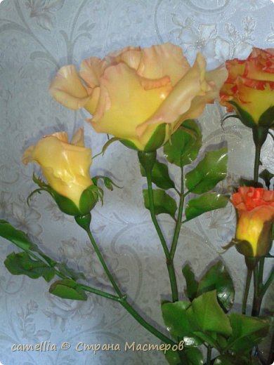И снова розы. фото 3