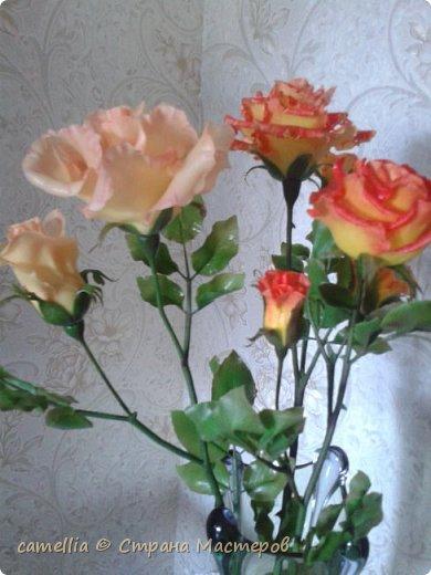 И снова розы. фото 2