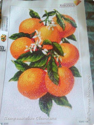 Всем привет! Вот увлеклась алмазной мозаикой))) Парочка работ Апельсинчики - 30*47 см фото 1