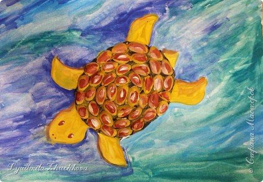 Морская черепаха фото 2