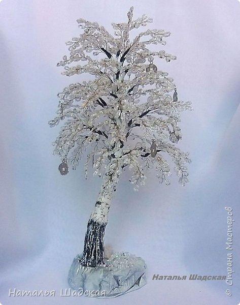 Еще одна березка, на этот раз зимняя. фото 2