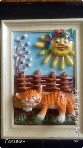 котик на весеннем солнышке и солнышко  фото 1
