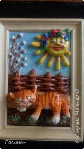котик на весеннем солнышке и солнышко  фото 3