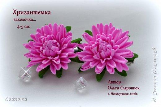 """Привет всем,мои дорогие! И вот снова с вами, я Ольга Сыротюк!  Очень сильно соскучилась по жителям Страны Мастеров...и  решила по радовать вас своей цветочной красотой!   Цветы хризантемы как бы соединяет легкий холод зимы и теплое дыхание лета.  Ее по праву считают царицей осени. Этот неприхотливый осенний цветок поистине царского происхождения. Ведь когда-то на Востоке в его честь устраивали роскошные пиры, изображение хризантемы служило символом знатности, счастья и считалось священным.  Ему посвящено много стихов, мифов и легенд. Сегодня у восточной красавицы поклоников не меньше, чем у признанных королев - розы и орхидеи.  Название цветка, которое происходит от греческих слов """"хризос"""" - золотой и """"антемос"""" - цветок (золотой цветок) не случайно, предки хризантемы были исключительно желтыми. По японски она называется """"кику"""" - солнце. В Японии ежегодно устраиваются красочные праздники хризантем, где на кукол в человеческий рост надевают исторические одежды из цветков хризантем. В этот день японцы пьют саке с лепестками этого чудесного цветка – символом счастья и долголетия. Вдохновляйтесь и творите! Дорогие мои, в связи большой загруженностью, не успеваю сюда забегать... Меня можно найти на сайте Одноклассники, в ВК...пишите личные сообщения,если вдруг возникли вопросы...обязательно отвечу  фото 1"""