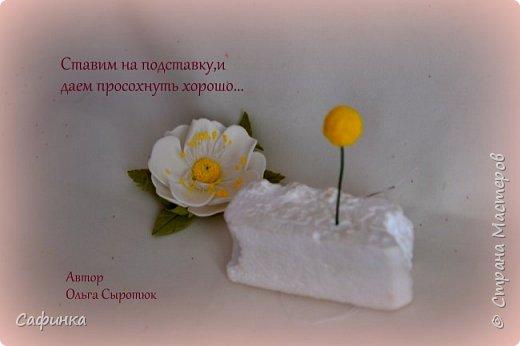 Привет,всем мои дорогие! И снова с вами я,Ольга Сыротюк. Большое количество учениц, задавали вопрос...Как создать красивую серединку для цвета шиповника? Сегодня открою маленький секретик,для тех кто еще не знает, а может только надумывает заняться творчеством! Дорогие мои, вдохновляйтесь и вперед творить вместе со мной..   Шиповник - колючее растение-апотропей, символ здоровья, изобилия, успеха. Шиповник наделяется способностью отвращать, устрашать и используется как оберег от демонов, для нейтрализации вредоносной магии, при лечении болезней. Шиповник называют еще дикой розой. Он известен человеку с глубокой древности. Древние греки связывали дикую розу с богиней красоты и любовного очарования   Шиповник- имеет мифологическое значение красоты, молодости, любви   фото 11