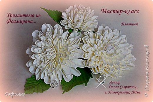 """Привет всем,мои дорогие! И вот снова с вами, я Ольга Сыротюк!  Очень сильно соскучилась по жителям Страны Мастеров...и  решила по радовать вас своей цветочной красотой!   Цветы хризантемы как бы соединяет легкий холод зимы и теплое дыхание лета.  Ее по праву считают царицей осени. Этот неприхотливый осенний цветок поистине царского происхождения. Ведь когда-то на Востоке в его честь устраивали роскошные пиры, изображение хризантемы служило символом знатности, счастья и считалось священным.  Ему посвящено много стихов, мифов и легенд. Сегодня у восточной красавицы поклоников не меньше, чем у признанных королев - розы и орхидеи.  Название цветка, которое происходит от греческих слов """"хризос"""" - золотой и """"антемос"""" - цветок (золотой цветок) не случайно, предки хризантемы были исключительно желтыми. По японски она называется """"кику"""" - солнце. В Японии ежегодно устраиваются красочные праздники хризантем, где на кукол в человеческий рост надевают исторические одежды из цветков хризантем. В этот день японцы пьют саке с лепестками этого чудесного цветка – символом счастья и долголетия. Вдохновляйтесь и творите! Дорогие мои, в связи большой загруженностью, не успеваю сюда забегать... Меня можно найти на сайте Одноклассники, в ВК...пишите личные сообщения,если вдруг возникли вопросы...обязательно отвечу  фото 7"""