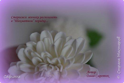 """Привет всем,мои дорогие! И вот снова с вами, я Ольга Сыротюк!  Очень сильно соскучилась по жителям Страны Мастеров...и  решила по радовать вас своей цветочной красотой!   Цветы хризантемы как бы соединяет легкий холод зимы и теплое дыхание лета.  Ее по праву считают царицей осени. Этот неприхотливый осенний цветок поистине царского происхождения. Ведь когда-то на Востоке в его честь устраивали роскошные пиры, изображение хризантемы служило символом знатности, счастья и считалось священным.  Ему посвящено много стихов, мифов и легенд. Сегодня у восточной красавицы поклоников не меньше, чем у признанных королев - розы и орхидеи.  Название цветка, которое происходит от греческих слов """"хризос"""" - золотой и """"антемос"""" - цветок (золотой цветок) не случайно, предки хризантемы были исключительно желтыми. По японски она называется """"кику"""" - солнце. В Японии ежегодно устраиваются красочные праздники хризантем, где на кукол в человеческий рост надевают исторические одежды из цветков хризантем. В этот день японцы пьют саке с лепестками этого чудесного цветка – символом счастья и долголетия. Вдохновляйтесь и творите! Дорогие мои, в связи большой загруженностью, не успеваю сюда забегать... Меня можно найти на сайте Одноклассники, в ВК...пишите личные сообщения,если вдруг возникли вопросы...обязательно отвечу  фото 6"""