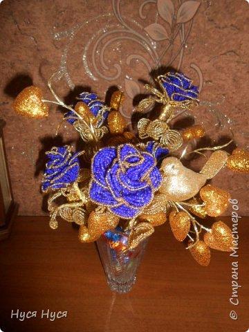 синие розы фото 2
