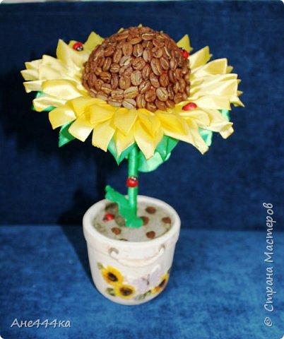 Давно хотела сделать кофейный подсолнух, очень мне нравится сочетание желтых лент и кофе. Вот такой подсолнушек в итоге получился. фото 1