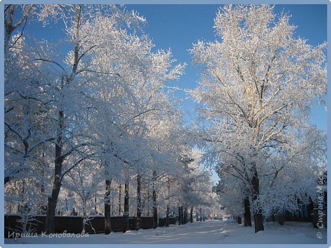 Все фотографии сделаны мною в начале января не помню точно какого года в Амурской области в г. Зея.. Там обычно, до начала ветров, до февраля, царствует такая красота. Основные фото сделаны на берегу реки Зея. Она, убегая от Зейской ГЭС,  долго не замерзает, что и дает возможность любоваться чудными пейзажами.   фото 8
