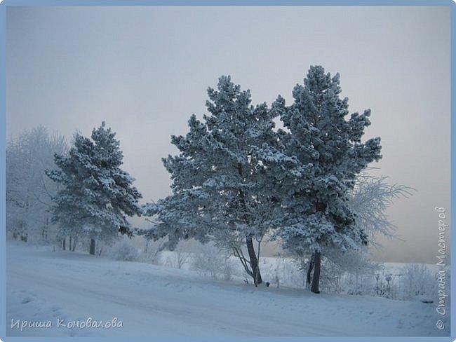 Все фотографии сделаны мною в начале января не помню точно какого года в Амурской области в г. Зея.. Там обычно, до начала ветров, до февраля, царствует такая красота. Основные фото сделаны на берегу реки Зея. Она, убегая от Зейской ГЭС,  долго не замерзает, что и дает возможность любоваться чудными пейзажами.   фото 10