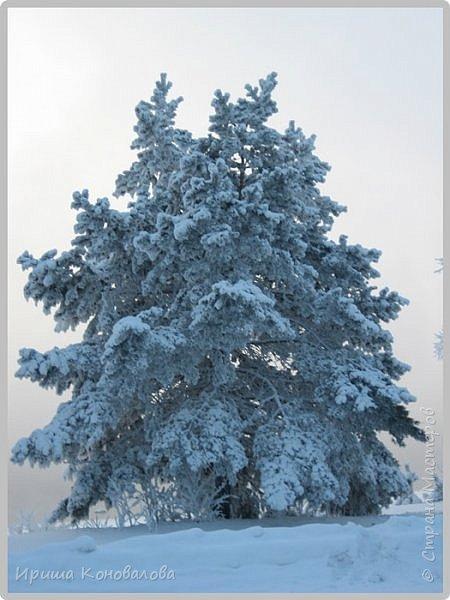 Все фотографии сделаны мною в начале января не помню точно какого года в Амурской области в г. Зея.. Там обычно, до начала ветров, до февраля, царствует такая красота. Основные фото сделаны на берегу реки Зея. Она, убегая от Зейской ГЭС,  долго не замерзает, что и дает возможность любоваться чудными пейзажами.   фото 12