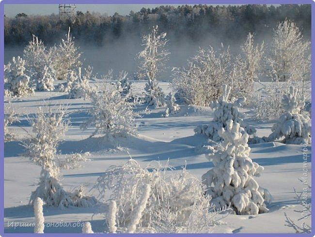 Все фотографии сделаны мною в начале января не помню точно какого года в Амурской области в г. Зея.. Там обычно, до начала ветров, до февраля, царствует такая красота. Основные фото сделаны на берегу реки Зея. Она, убегая от Зейской ГЭС,  долго не замерзает, что и дает возможность любоваться чудными пейзажами.   фото 15