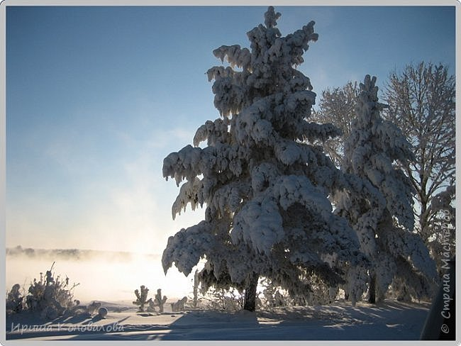 Все фотографии сделаны мною в начале января не помню точно какого года в Амурской области в г. Зея.. Там обычно, до начала ветров, до февраля, царствует такая красота. Основные фото сделаны на берегу реки Зея. Она, убегая от Зейской ГЭС,  долго не замерзает, что и дает возможность любоваться чудными пейзажами.   фото 16