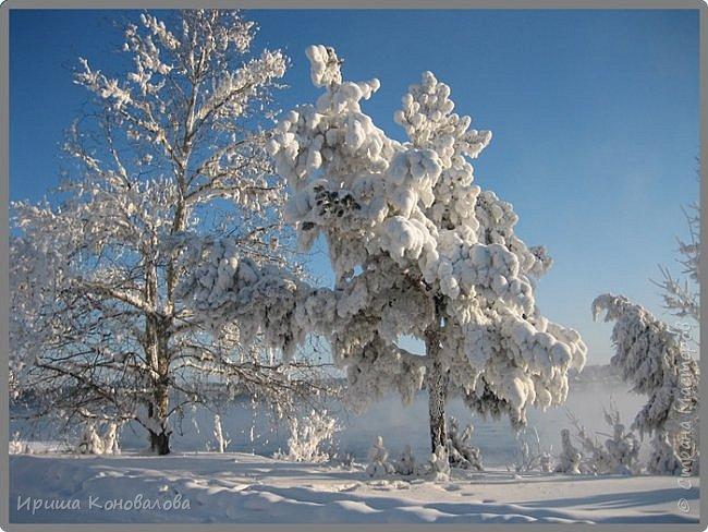 Все фотографии сделаны мною в начале января не помню точно какого года в Амурской области в г. Зея.. Там обычно, до начала ветров, до февраля, царствует такая красота. Основные фото сделаны на берегу реки Зея. Она, убегая от Зейской ГЭС,  долго не замерзает, что и дает возможность любоваться чудными пейзажами.   фото 17