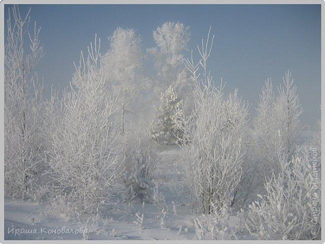 Все фотографии сделаны мною в начале января не помню точно какого года в Амурской области в г. Зея.. Там обычно, до начала ветров, до февраля, царствует такая красота. Основные фото сделаны на берегу реки Зея. Она, убегая от Зейской ГЭС,  долго не замерзает, что и дает возможность любоваться чудными пейзажами.   фото 26