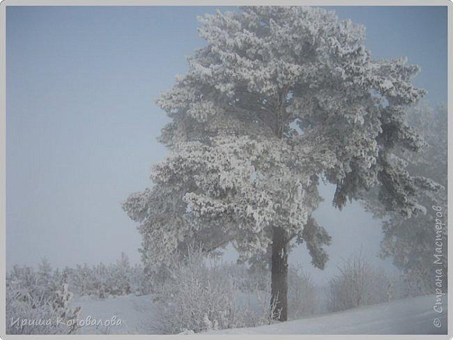 Все фотографии сделаны мною в начале января не помню точно какого года в Амурской области в г. Зея.. Там обычно, до начала ветров, до февраля, царствует такая красота. Основные фото сделаны на берегу реки Зея. Она, убегая от Зейской ГЭС,  долго не замерзает, что и дает возможность любоваться чудными пейзажами.   фото 27