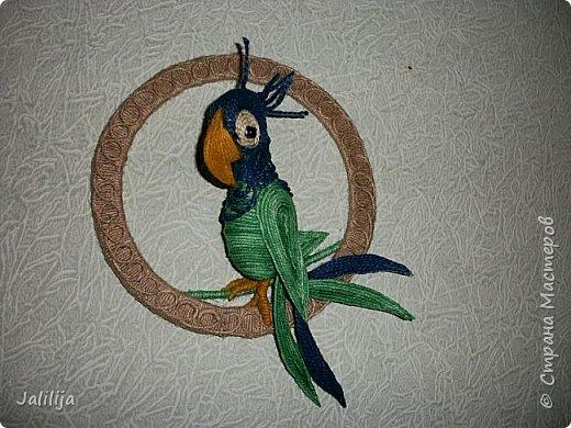 Уважаемые жители и гости Страны мастеров! Насмотрелась на всяких существующих и сказочных зверюшек и птичек,  которые в Стране живут уже целыми  стаями, и решила увеличить стаю птиц на одну единицу. Вот на такого попугайчика.  фото 8