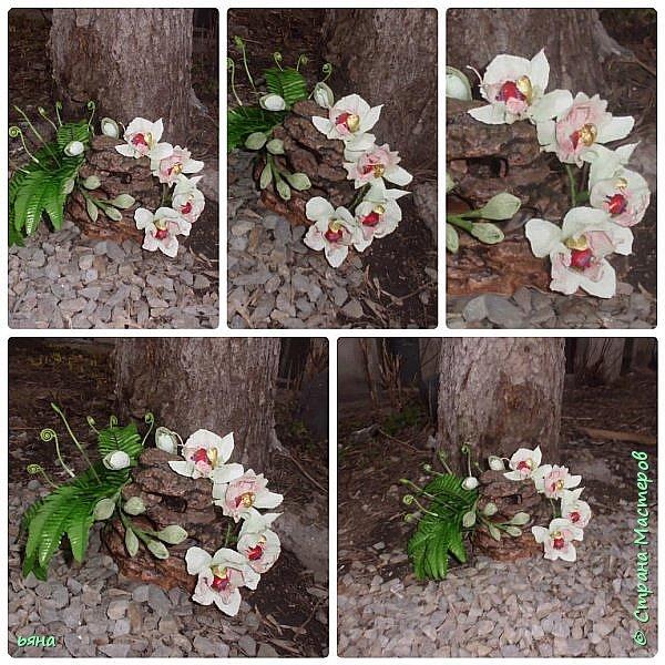 """Работа называлась """"Дикая орхидея"""" Мое видение и мои стихи: Среди проталин и камней Случайно чудо увидала... Живая ветка орхидей Вдруг расцветает у корней И папоротник вместе с ней... фото 2"""