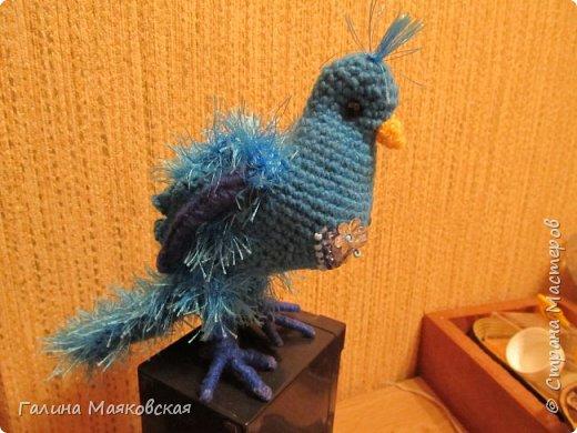 Привет всем! Сегодня у нас - синяя птица.  Может быть, она и не такая, но кто ее видел? А у нас такая. фото 4