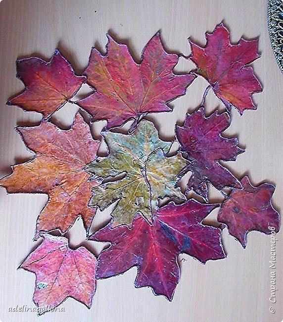 Здравствуйте , дорогие мастера и мастерицы! Осенью собрала немного сухих листьев и сначала хотела их применить при создании панно или сделать из них корзинку. Разрезала упаковку для молока, разгладила и приклеила листья , утюгом прогладила. Покрыла бесцветным лаком и оставила. Попробовала сделать корзину , не получилось.  Увидела в интернете декоративную салфетку из листьев, но как её делали не нашла. Листьев больше не было. Тогда я осторожно отодрала листья с картона от корзинки ( при этом , конечно повредила их, а также изменился цвет, т.к пришлось размачивать в воде.) Но делать нечего. Приклеила их на плотную ткань, электроважегателем вырезала вокруг листьев, по краям приклеила шнур макраме, вновь покрыла лаком. Всё. Думаю осенью повторю уже с неиспорченными листьями.  Вазу в центре сделала из тыквочки, которую удалось высушить осенью. Просто покрасила её.       фото 4