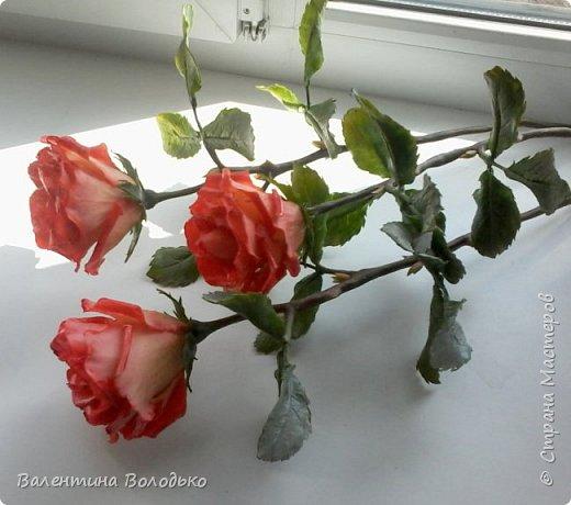 Добрый день мастера и мастерицы!!!Розы меня не отпускают.Смотрите новую партию. фото 1