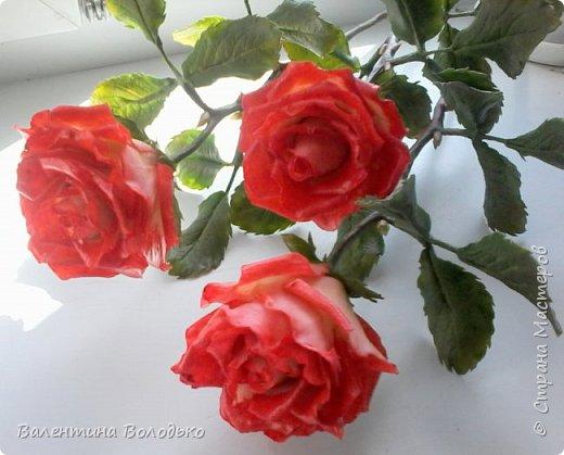Добрый день мастера и мастерицы!!!Розы меня не отпускают.Смотрите новую партию. фото 4