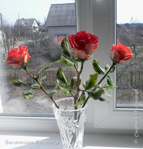 Добрый день мастера и мастерицы!!!Розы меня не отпускают.Смотрите новую партию. фото 2
